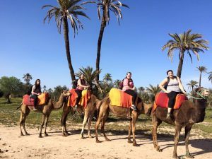 Jess and other students studying abroad rode camels while in Morocco  (Photo provided by Jess Sullivan)