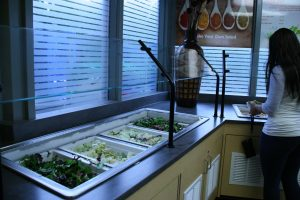 The Market Place's new salad bar  (Photo by Elissa Sanci/Charger Bulletin photo)